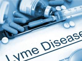 hopkins-new-study-shows-lyme-disease-alters-the-immune-system.jpg