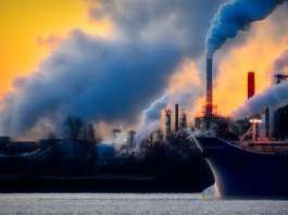 environmental-toxins-how-they-affect-your-health-and-what-you-can-do-to-reduce-their-impact.jpg